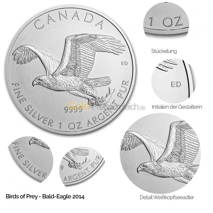 Details der Silbermünze Birds of Prey: Bald Eagle