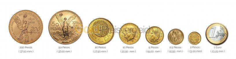 Größenvergleich Centenario Goldmünze mit 1 Euro-Stück