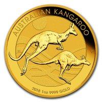 Nugget Kangaroo