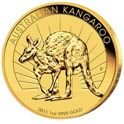Gold Nugget Känguru